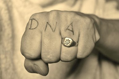 DNA of an NDA part 2